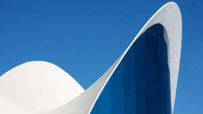 Geometría fractal en la Ciudad de las Artes de Valencia