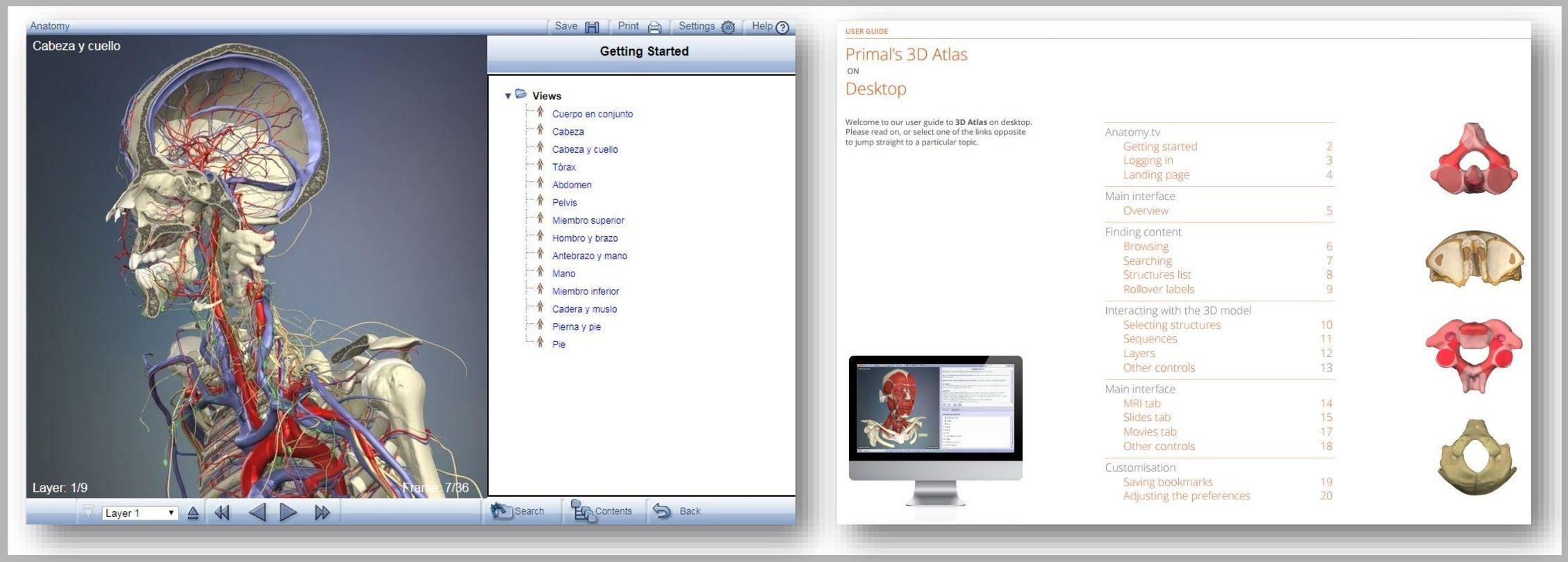 Primal\'s 3D Atlas: una herramienta imprescindible | Biblioteca CEU