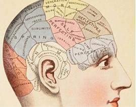 Resultado de imagen de neuropolítica