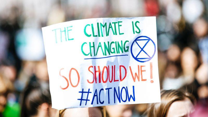Manifestación por la sostenibilidad