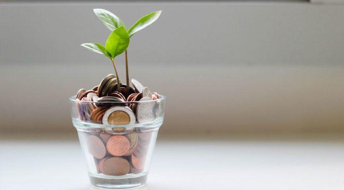 El crecimiento económico no debe perjudicar la sostenibilidad