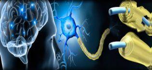esclerosis