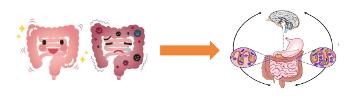 Representación de disbiosis y afectación del SNC mediante MGBX
