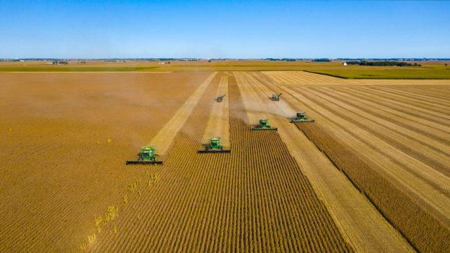 Vista de una granja agrícola