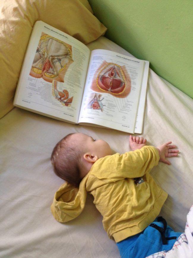 Maceo ayuda a su papi a estudiar