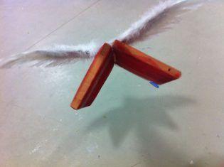 Libro Volador. Victoria Cano