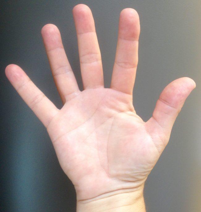 mano 5 dedos
