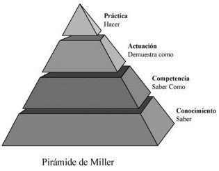 piramide Miller