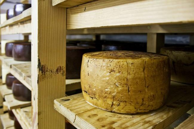 Fotografia de un queso curado en bodega