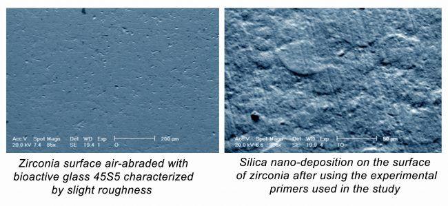 Resultados de este trabajo en microscopia electrónica