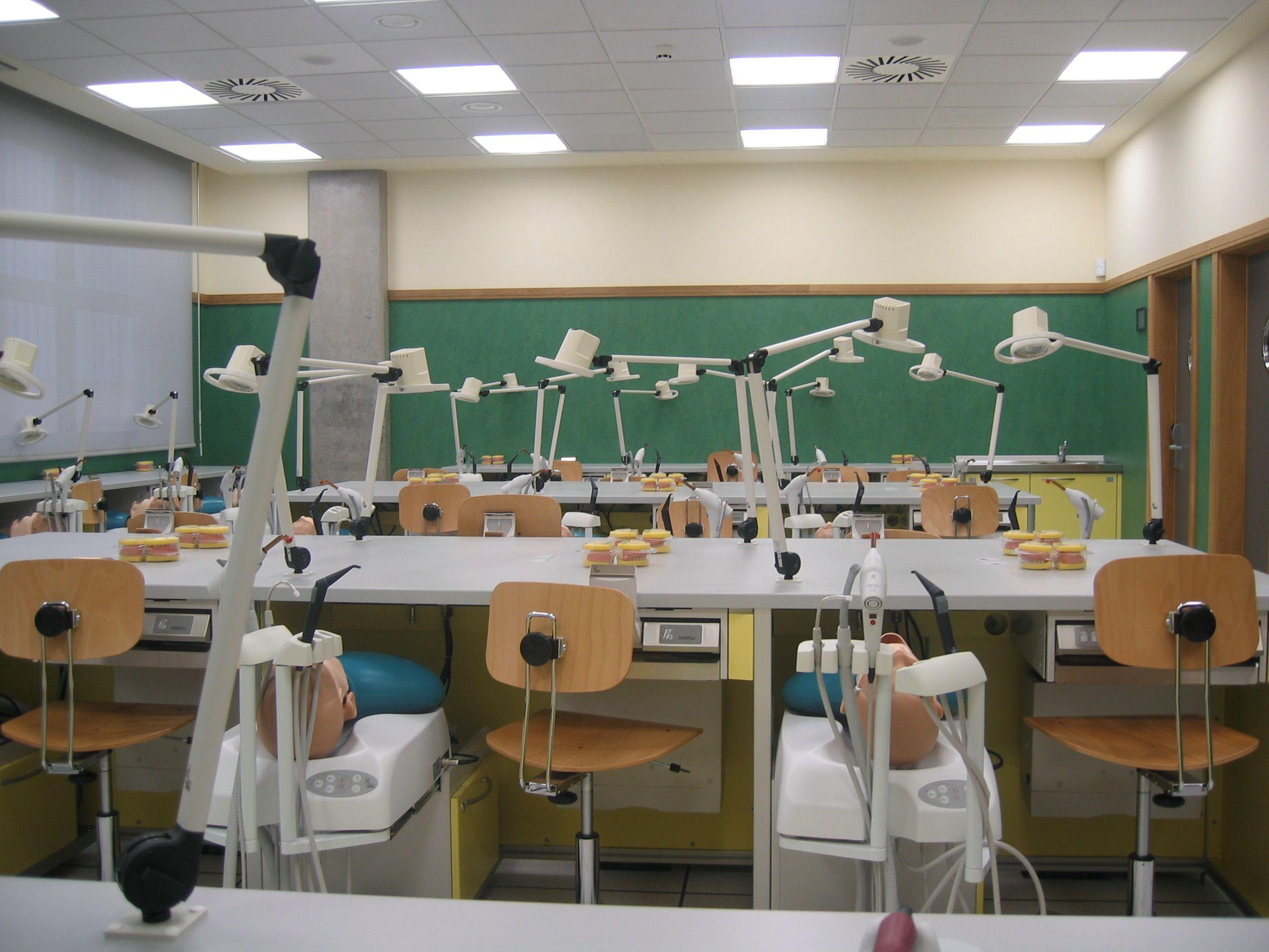 Dentistry at University CEU Cardenal Herrera