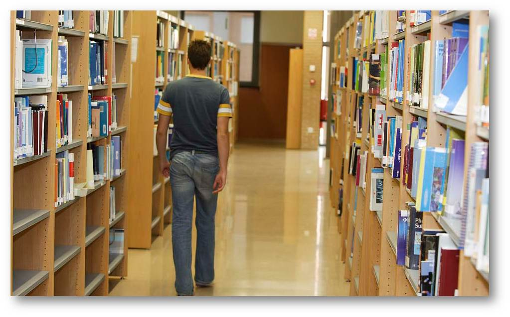 The library is one of the services that students use more in the university