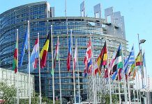 Becas Robert Schuman del Parlamento Europeo