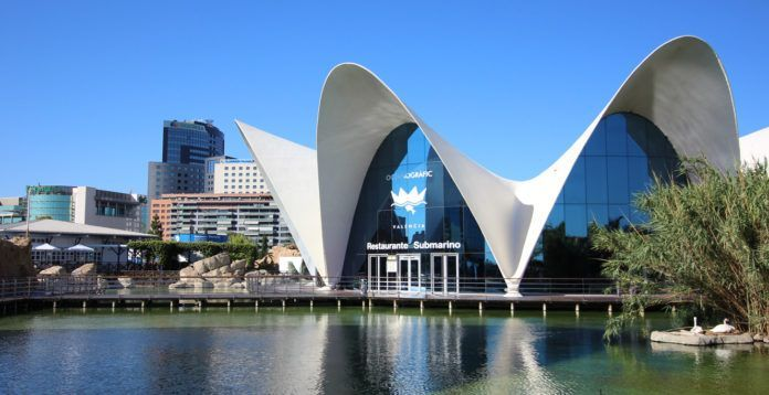 The Aquarium, one of the main attractions in Valencia!