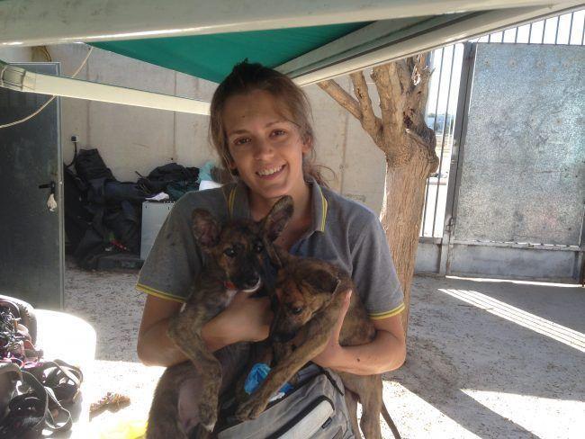 Alicia Robles Vivar, concienciación y esfuerzo sumados para proteger a los animales