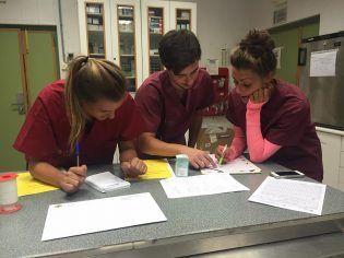 Alumnos de anestesiología preparando el caso