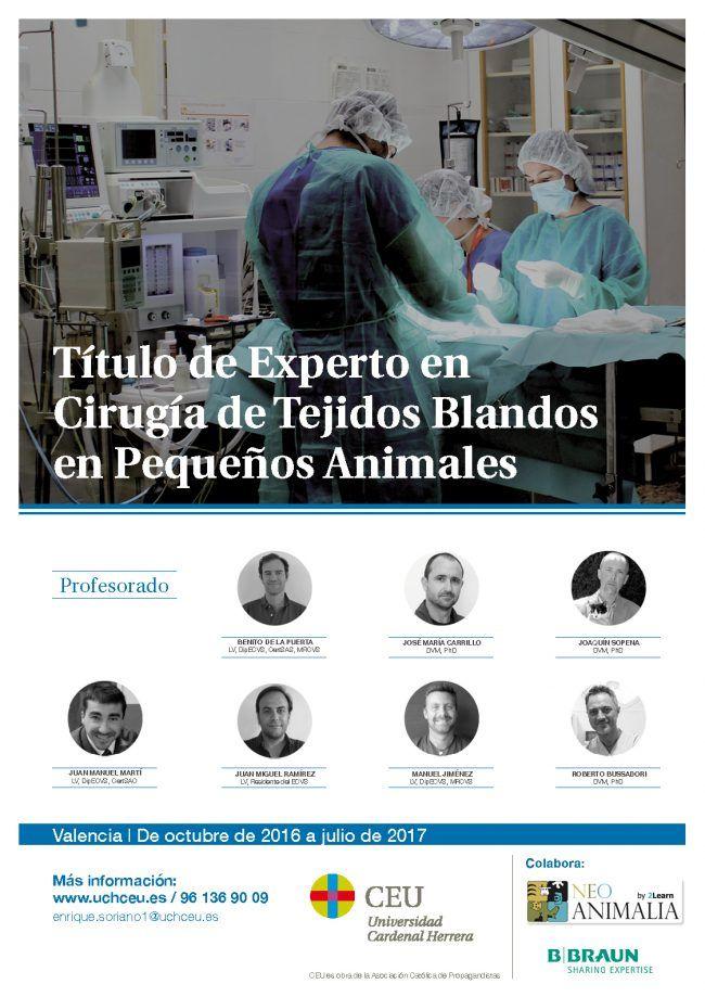 Cartel TE cirugía pequeños animales2016