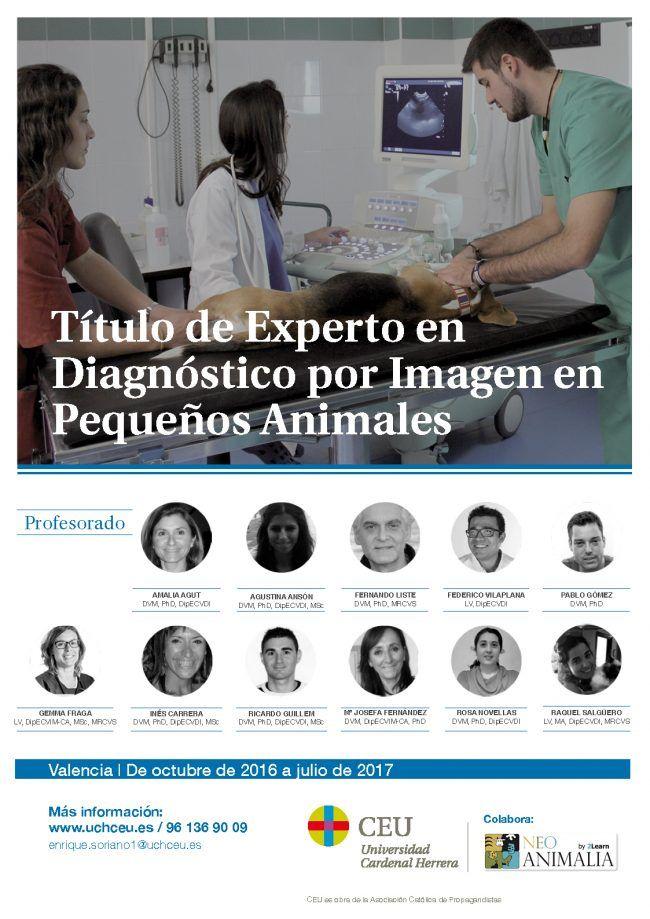 Cartel TE diagnóstico pequeños animales2016