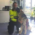 identificación de perro perdido gracias al chip