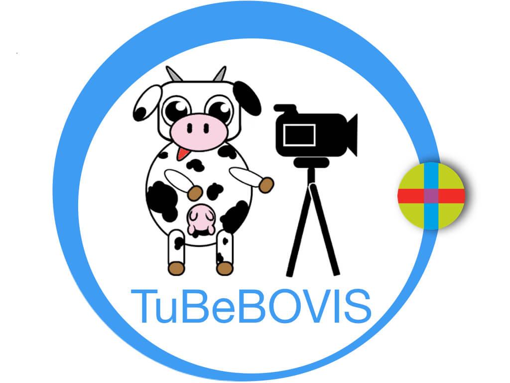 Logo TuBeBOVIS