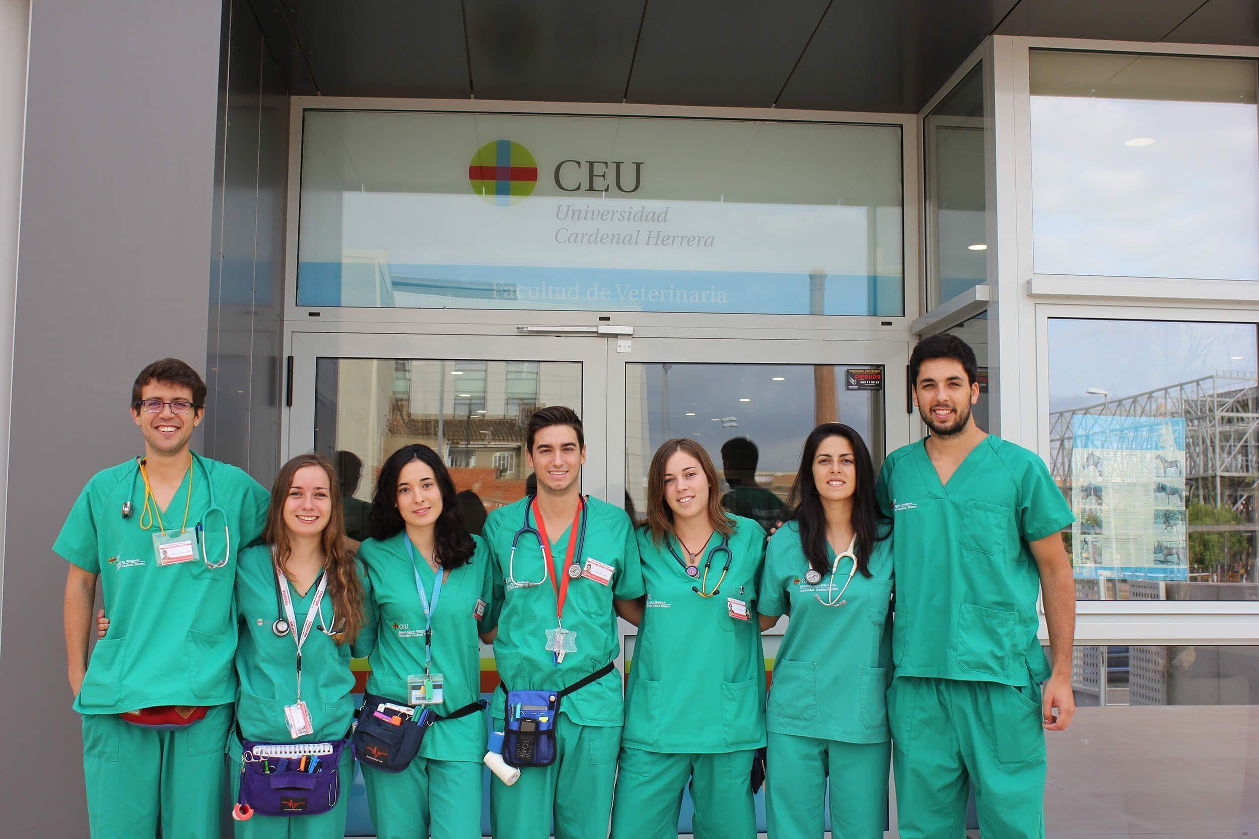 Nuevo equipo de Veterinarios Internos