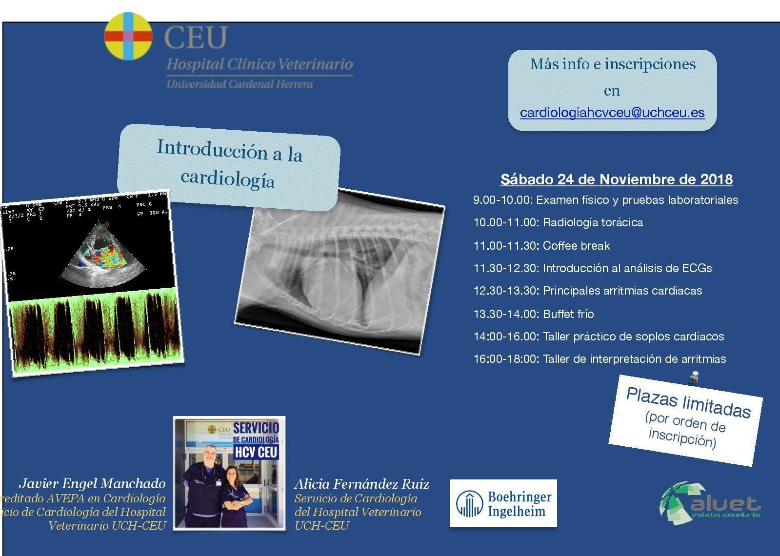 Curso introducción a la cardiología