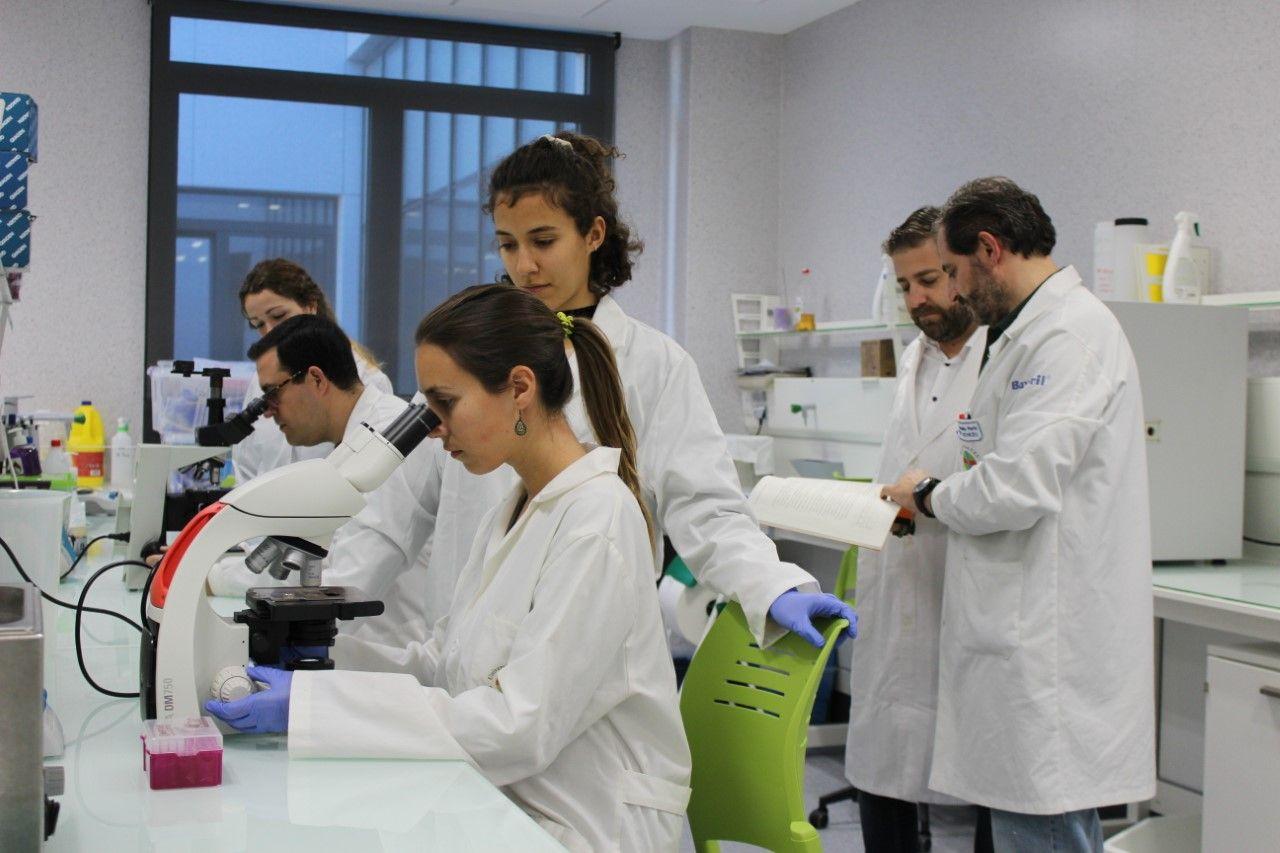 Equipo de investigación del proyecto PARAPEZ