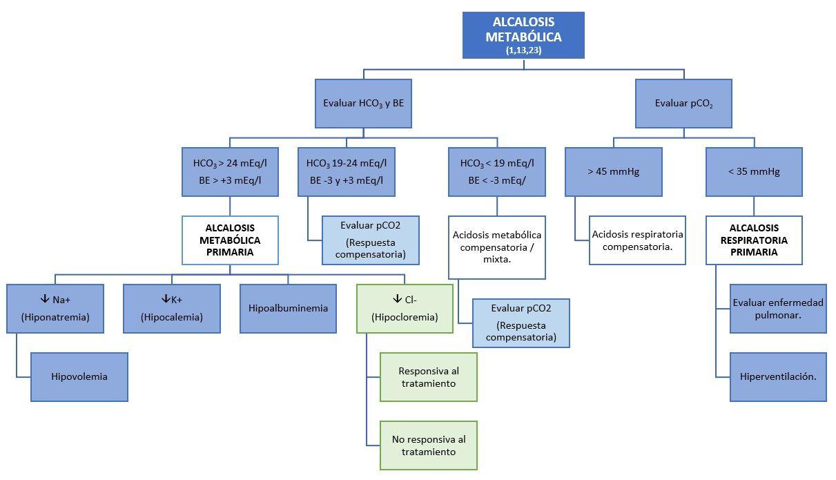 Algortimo tratamiento alcalosis metabólica. Elaborado por Diana Uribelarrea