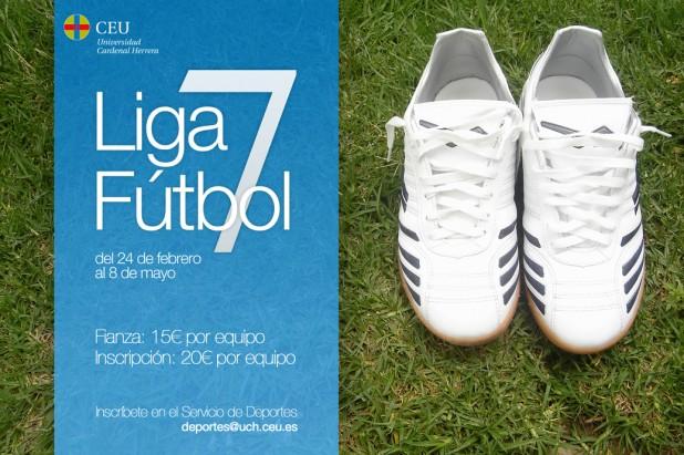 Liga Futbol 7